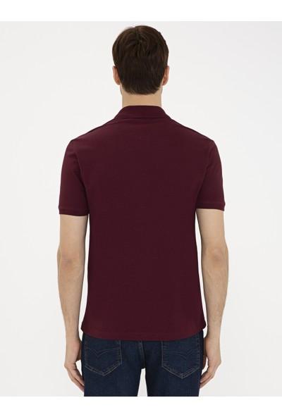 Cacharel Polo Yaka T-Shirt 50239479-VR014