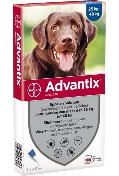 Bayer Advantix 25 kg ve 40 kg Arası Köpekler Için Ense Damlası 4 Tüp