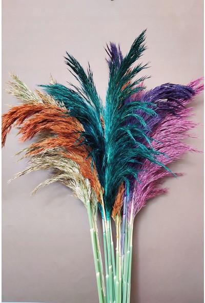 Eçiçek Şoklanmış Pampas Otu 100 cm Karışık Renk 30'lu Demet