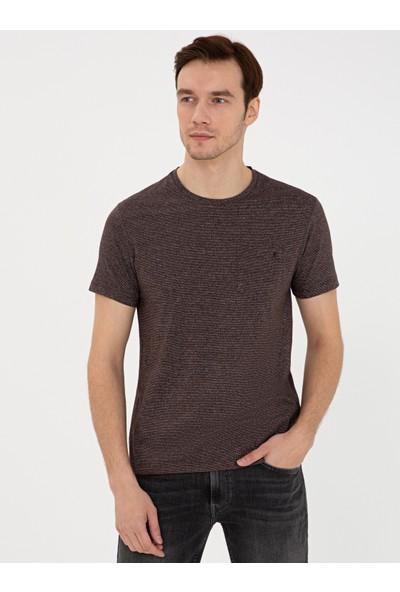 Cacharel Kahverengi T Shirt 50240270-VR029