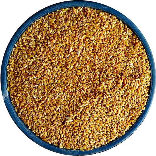 Bizim Yem Yemlik Elenmiş Buğday - 5 kg (Tavuk, Piliç, Hindi, Ördek, Güvercin, Kaz )