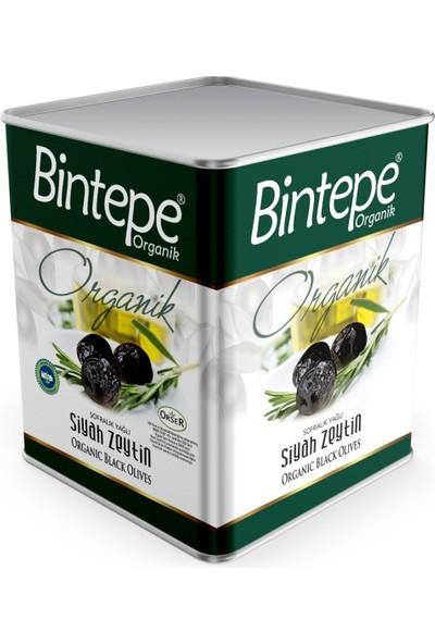 Bintepe Organik Organik Siyah Zeytin 10 kg ( Orta Boy)